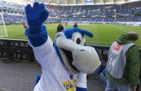 HSV: Klok en 'Dino' blijven behouden