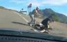 Wielrenner in elkaar geslagen automobilist Gran Canaria spanje Raul Marquez