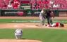 Jonathan India honkbal bal tegen hoofd MLB