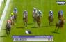 Ryan Moore jockey van paard gevallen verpletterd blijven hangen val